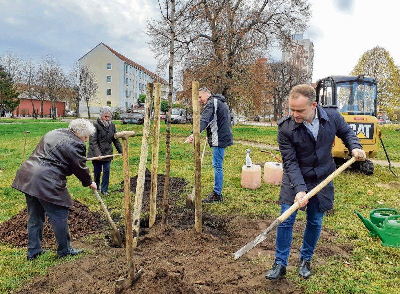 Wir schenken Neubrandenburg einen Baum