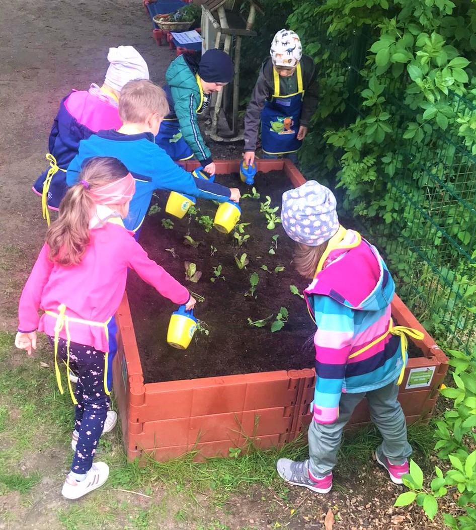 Gemüsebeete für unsere Kids in Dersekow