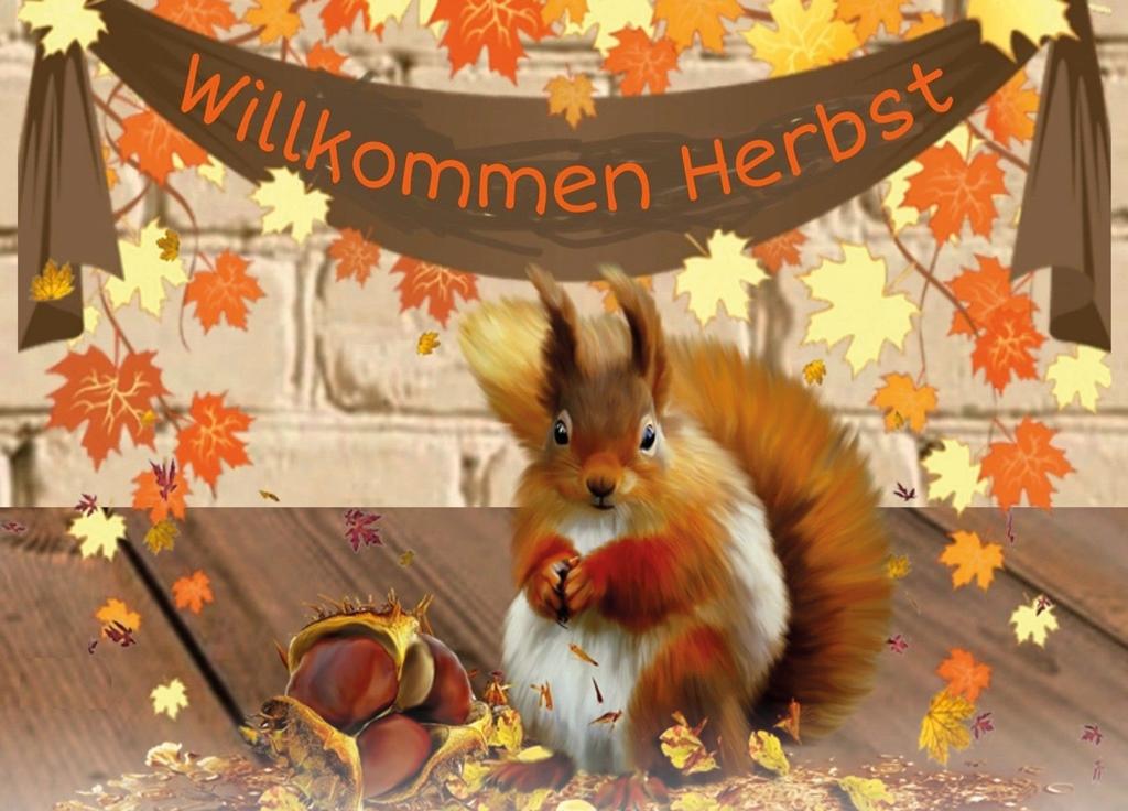 Read more about the article Auf geht es in den Herbst mit unseren Veranstaltungen im Oktober