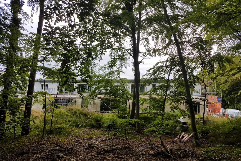 13.07.20 - Blick von der Waldseite